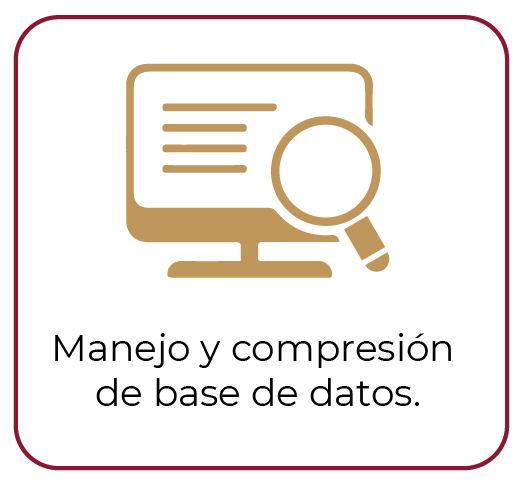 Manejo base de datos
